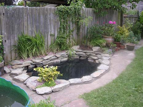 small garden pond design